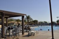 Мертве море